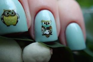 Рисунки совы на ногтях, маникюр с наклейками - совы